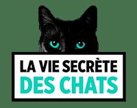 partenaire-vie-secrete-des-chats-200